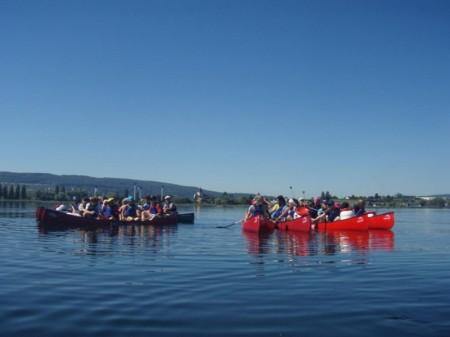Gruppe in Kanus vor der Insel Reichenau auf dem Bodensee