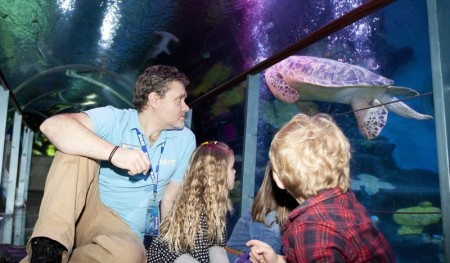 Sea Life Aquarium in Konstanz am Bodensee